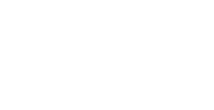 Stephens Wilmot logo footer